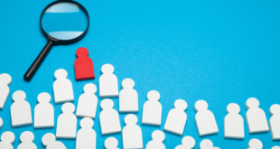 Skills that separate successful careers: standing out from job seeker to top leader
