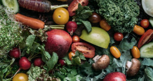 Supporting Your Immune System with Balanced Nutrition