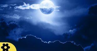 Sleep Music, Sleep Meditation, Calm Music, Insomnia, Sleep Therapy, Relax, Study, Spa, Sleep,✿109C