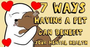 7 Ways Having a Pet Can Improve Your Mental health