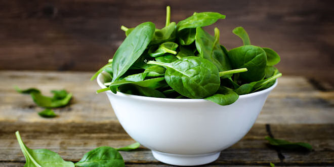 Amazing Health Benefits from eating Leafy Green Spinach