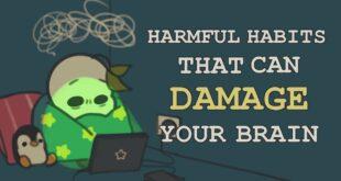 9 Habits That Damage Your Brain